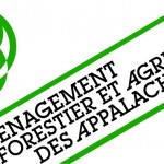 AFAA Logo OK 09