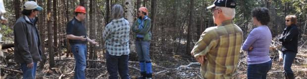 Le projet du ruisseau Bernier finaliste à la FEE
