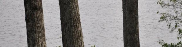 Signature d'une entente de bassin au lac Aylmer