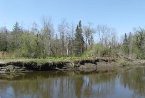 Érosion des berges rivière Tomifobia