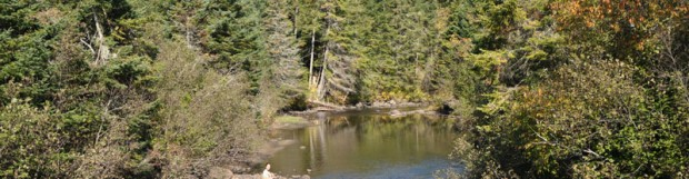 Visite de la rivière Coaticook avec des représentants du VDEC