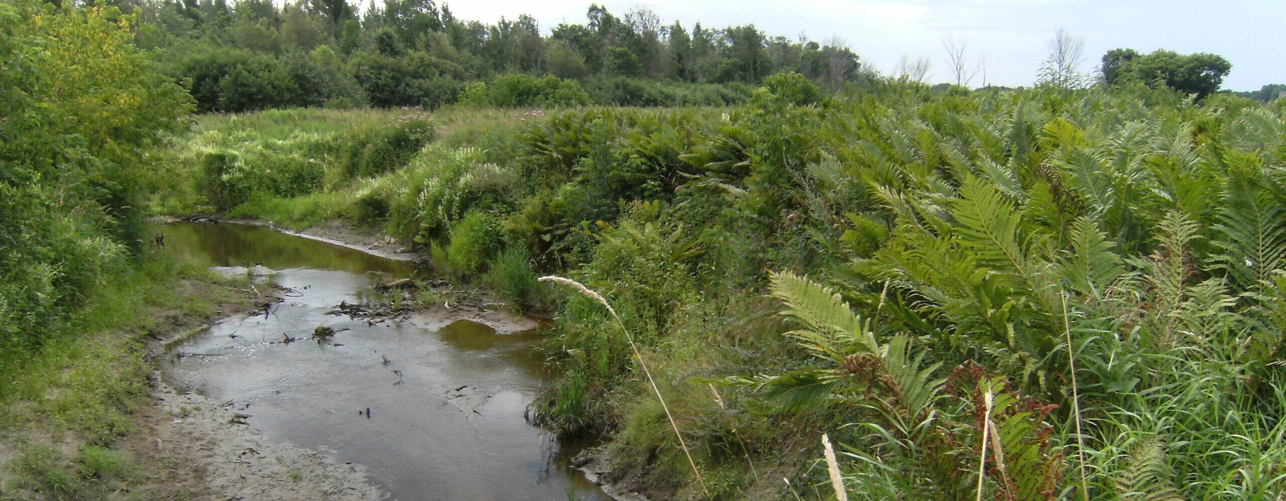 rivièrest-germain